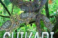 Shikari Ebook Cover