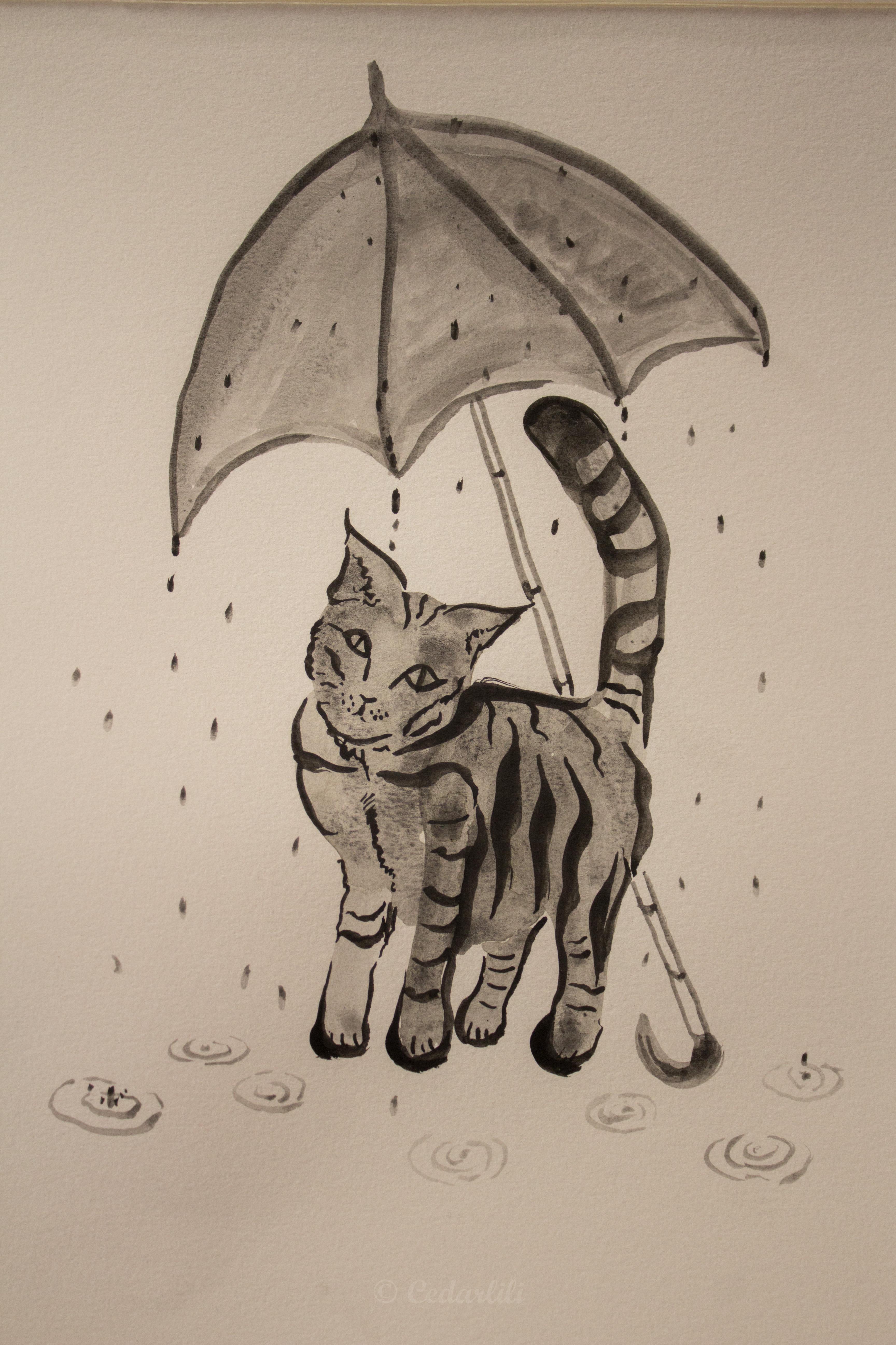 Sumi cat in the rain