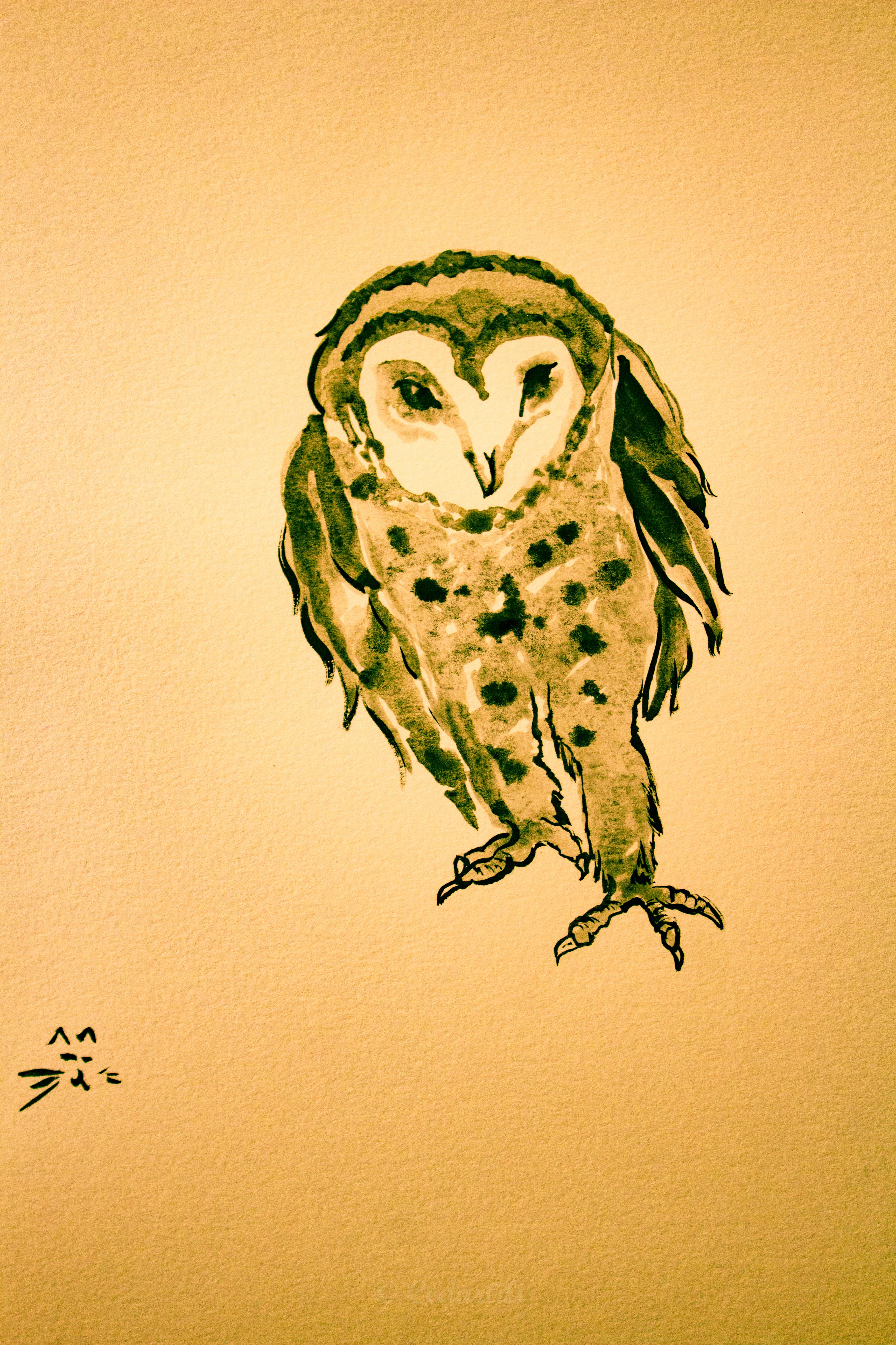 Sumie ink barn owl
