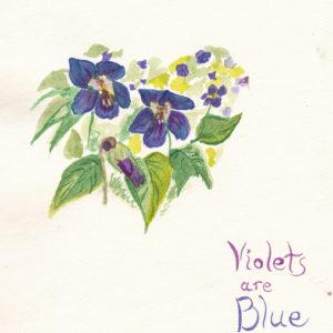 violets-1
